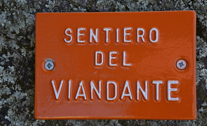 VIANDANTE cartello 021